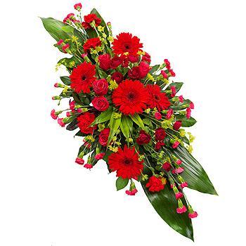 0e4d056c28c0d5 Oasis sprays – Butterfly flowers